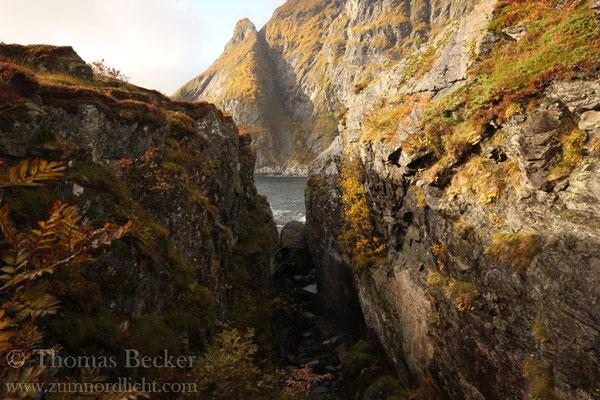 Landschaft bei A i Lofoten.