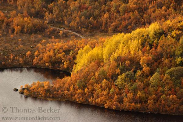 Wunderschöne Herbstfarben.