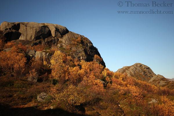 Herbst auf den Lofoten.