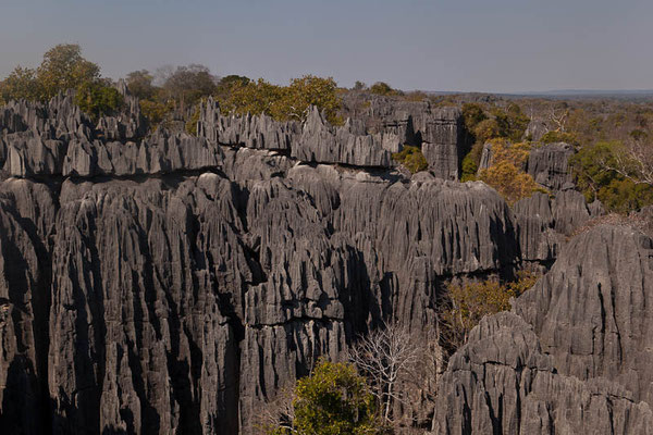 Nationalpark Tsingy de Bemaraha - Ein System aus Schluchten und messerspitzen Kalksteinspitzen