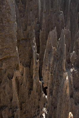 Madagaskar: Nationalpark Tsingy de Bemaraha - Ein System aus Schluchten und messerspitzen Kalksteinspitzen