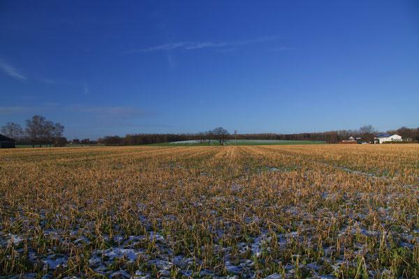 abgeerntetes Feld mit Schnee auf der grünen Wiese in der Mitte