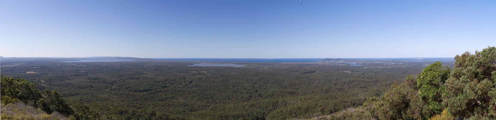 Australian Everglades