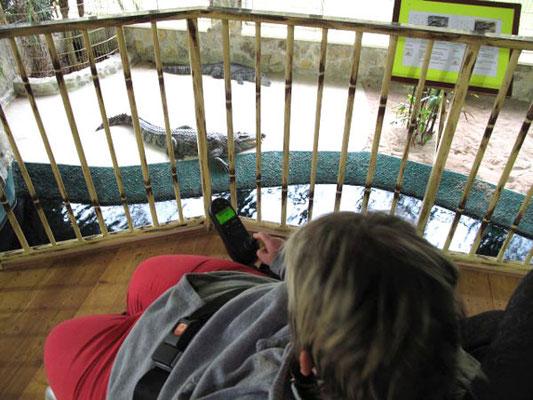 Tagesausflug in den Erlebnispark Meeresaquarium Zella-Mehlis
