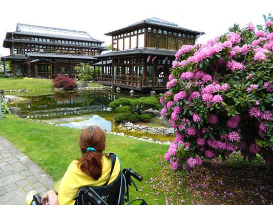 Tagesausflug in den Japanischen Garten Bad Langensalza