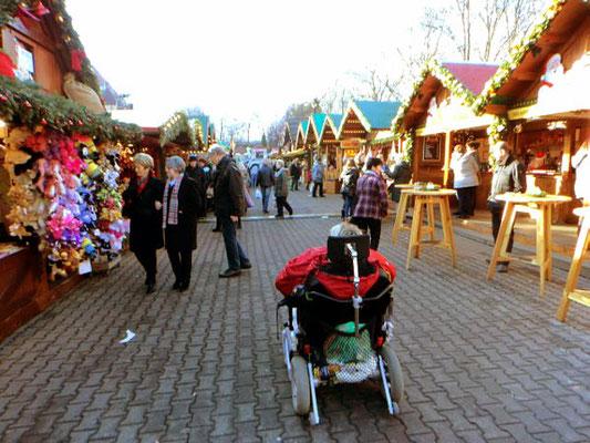 Tagesausflug auf den Erfurter Weihnachtsmarkt