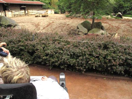 Tagesausflug in den Leipziger Zoo