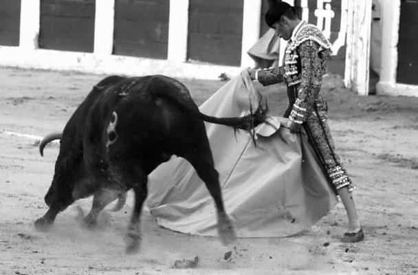 SERGIO BLASCO Y DUENDE TAURINO 6