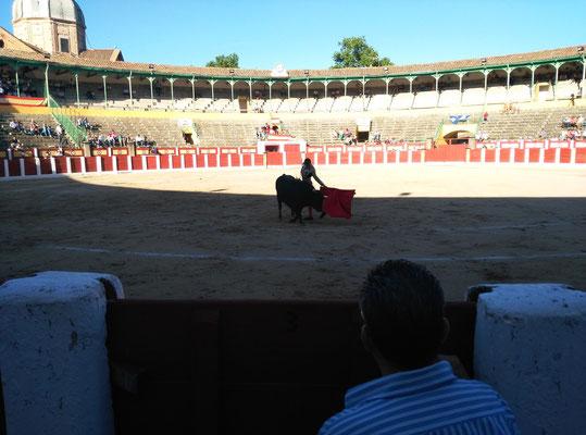 SERGIO BLASCO Y DUENDE TAURINO 35