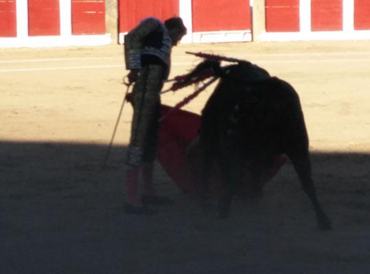 SERGIO BLASCO Y DUENDE TAURINO 36