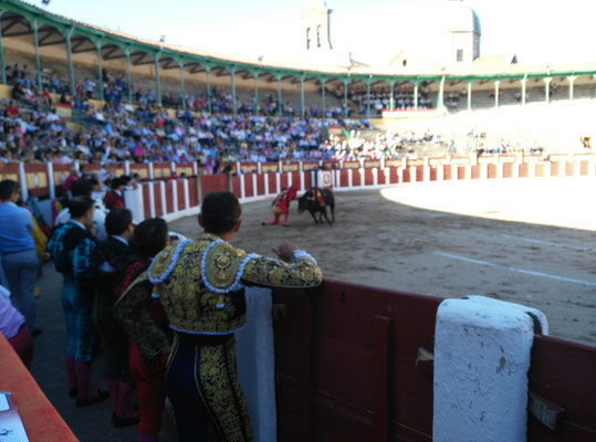 SERGIO BLASCO Y DUENDE TAURINO 26