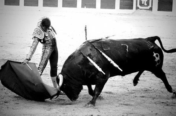 SERGIO BLASCO Y DUENDE TAURINO 12