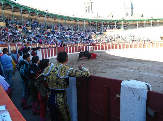 SERGIO BLASCO Y DUENDE TAURINO 27
