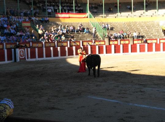 SERGIO BLASCO Y DUENDE TAURINO 28