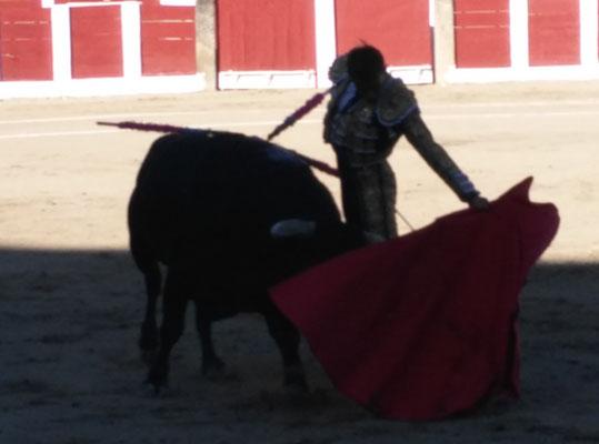 SERGIO BLASCO Y DUENDE TAURINO 37
