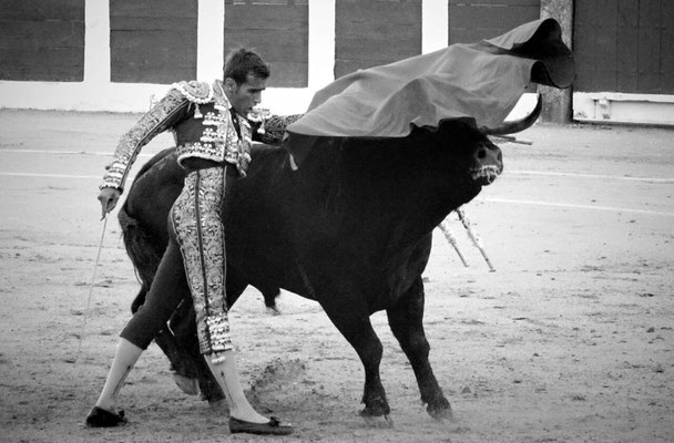 SERGIO BLASCO Y DUENDE TAURINO 2