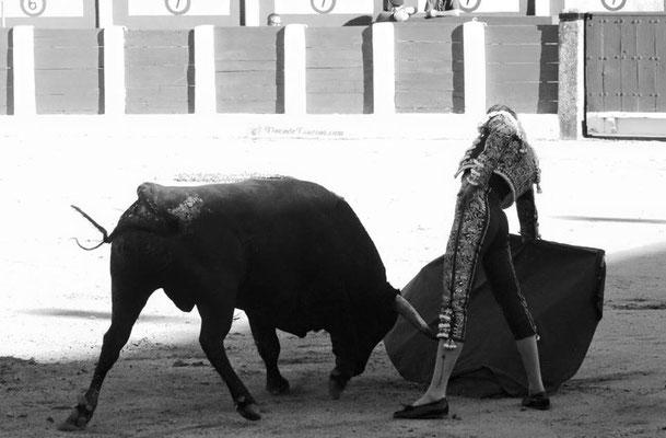 SERGIO BLASCO Y DUENDE TAURINO 7