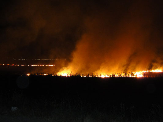Burning fields near Gracanica