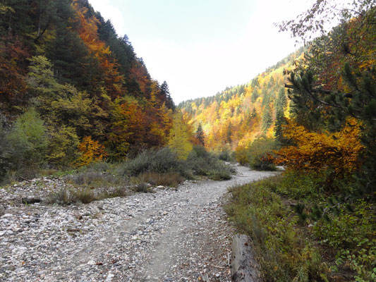 In the Rugova valley behind Peja