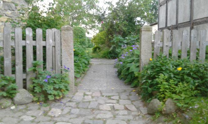 Unser Eingang vom Hof zur Terrasse.