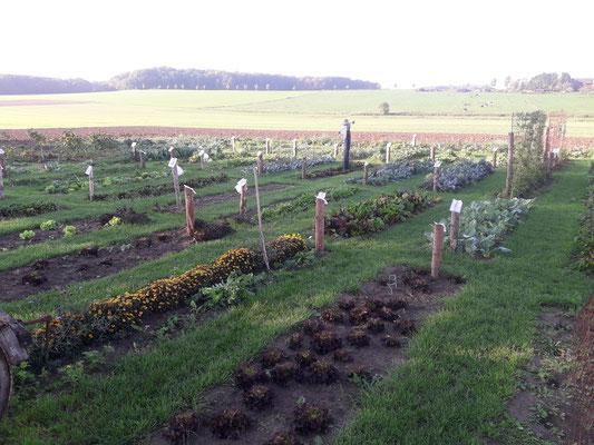 Unser Bauerngarten im Frühherbst 2019.