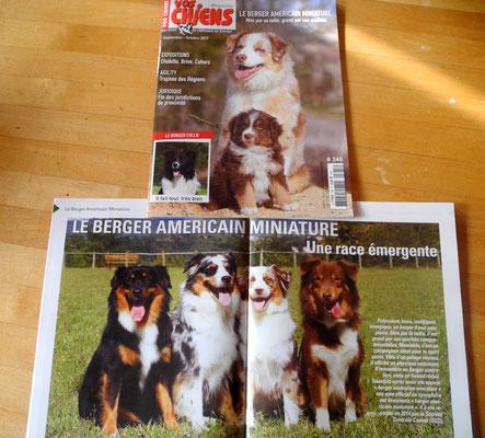 Numéro septembre 2017 du vos chiens magazines spécial berger américain miniature