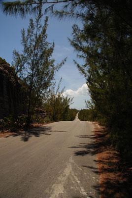 Eleuthera, die Insel ist lang, sehr lang.....