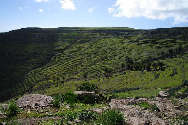 Terrassen an den Berghängen, früher wurde hier z. T. Getreide angebaut