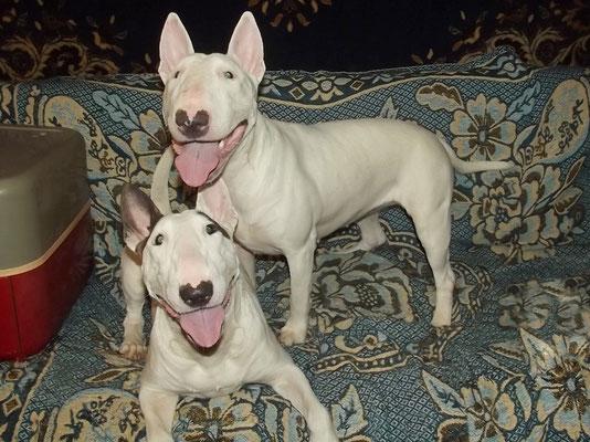 Две подружки - Ханка и Элька