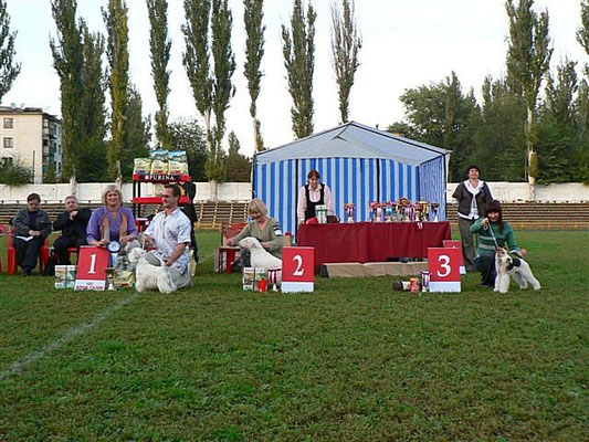Бася 10 месяцев в БЭСТе (г.Кременчуг)