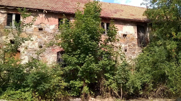 Ruine in Oehna - heute ein Stadtteil von Bautzen (Foto von Dr. Baal Müller).