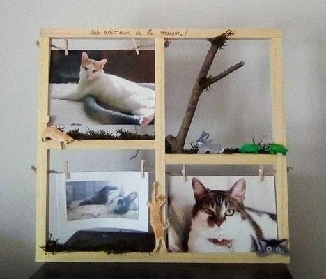 cadre photo en bois original, avec 3 photos d'animaux, de la mousse végétale, des branches et des animaux en bois collés en décor: chats, lapin et tortues