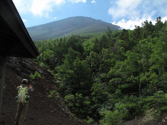 御庭付近から見上げる富士