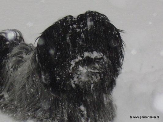 Nel im Winter 2009/10