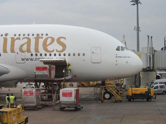 Da steht es, das größte Passagierflugzeug der Welt. 2 Stöckig. Der Airbus A380 800