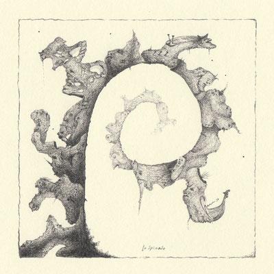 36-Spirale