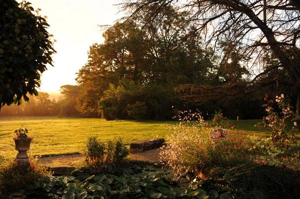 Château du Calaoué©, le parc au soleil levant