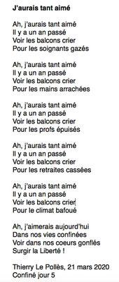 """""""J'aurais tant aimé"""" auteur : Thierry Le Pollès"""