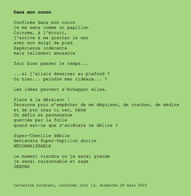 """""""Dans mon cocon"""" auteure Catherine Constant"""
