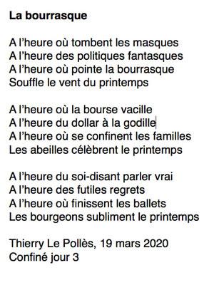 """""""La bourrasque"""" auteur : Thierry Le Pollès"""