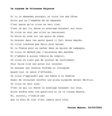 """""""Le royaume de Pincesse Raiponde"""" auteur : Dorian Masson"""