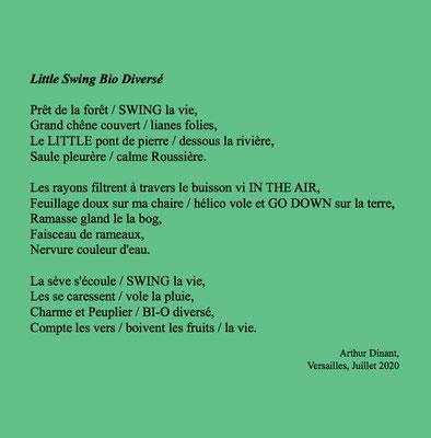 Auteur : Arthur Dinant
