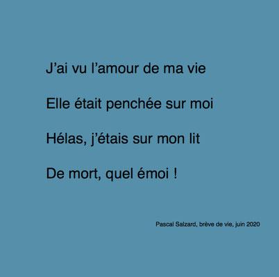 auteur : Pascal Salzard