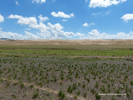 Mongolei - In der Nähe der Sanddüne Khongoryn Els