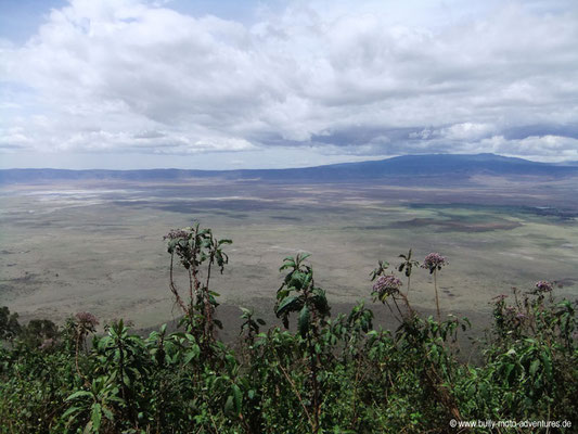 Tansania - Safari-Tour - Ngorongoro Krater