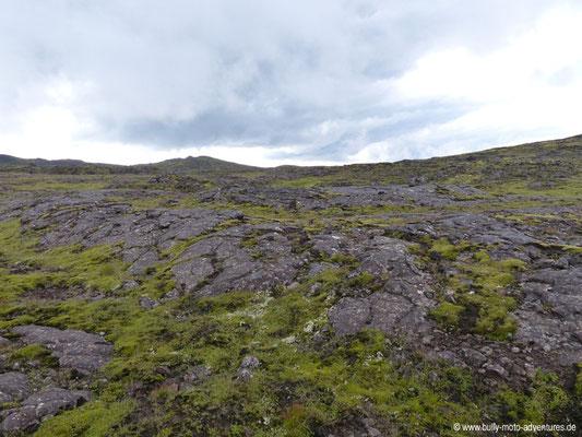 Island - Inside the Volcano - Moosbedecktes Lavafeld auf dem Weg zum Vulkan
