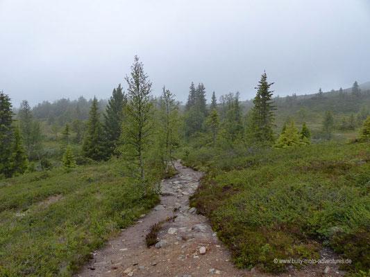 Norwegen - Hardangervidda-Plateau bei Rjukan
