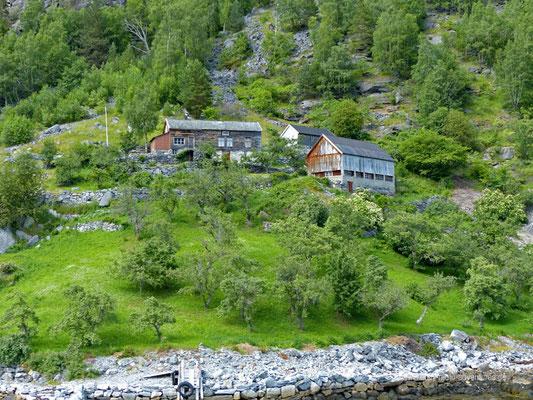 Norwegen - Fährfahrt auf dem Geirangerfjord - Abgelegene Farm