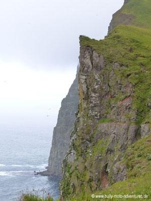 Island - Hornstrandir - Etappe 2 - Hornvík über Hornbjarg nach Hornvík - Vogelfelsen Hornbjarg