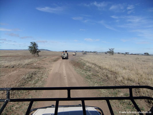 Tansania - Safari-Tour - Blick aus dem Auto (Serengeti)